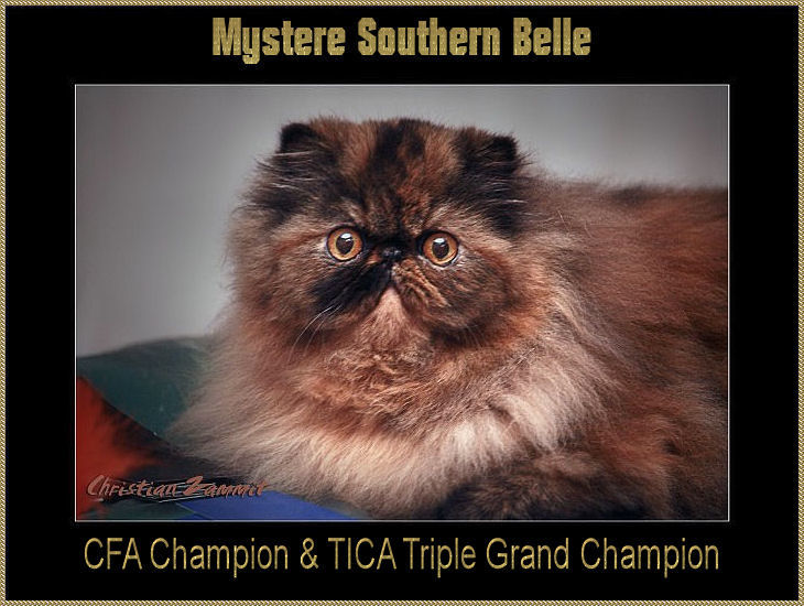 Mystere Southern Belle